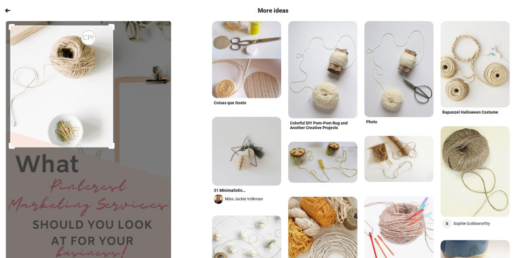 Narrow focus of the visual search tool on Pinterest